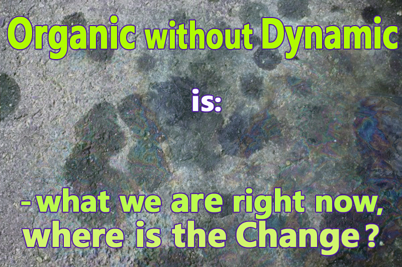 Image Result For Dynamic Definitiona